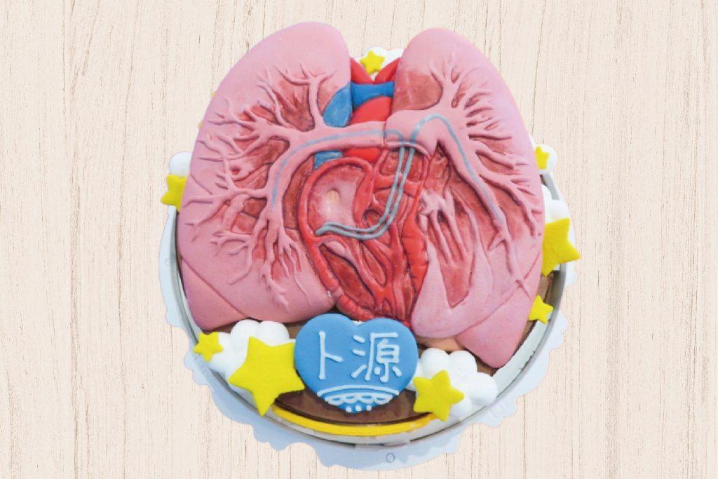 器官造型蛋糕、客製化生日蛋糕   米爾利甜點創作 Meler Patisserie