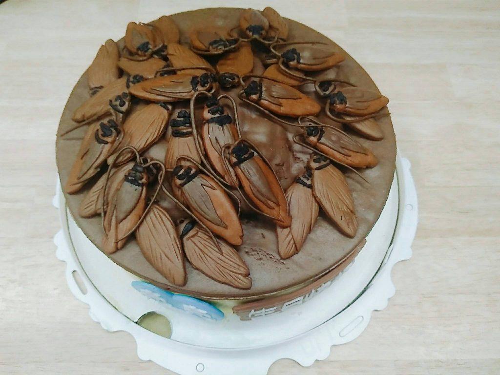 蟑螂造型蛋糕、整人造型蛋糕、客製化生日蛋糕   米爾利甜點創作 Meler Patisserie